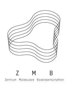 z_m_b_logo